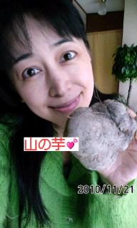 山の芋(*^O^*)