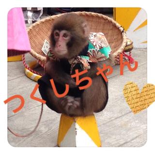 猿まわし *\(^o^)/*