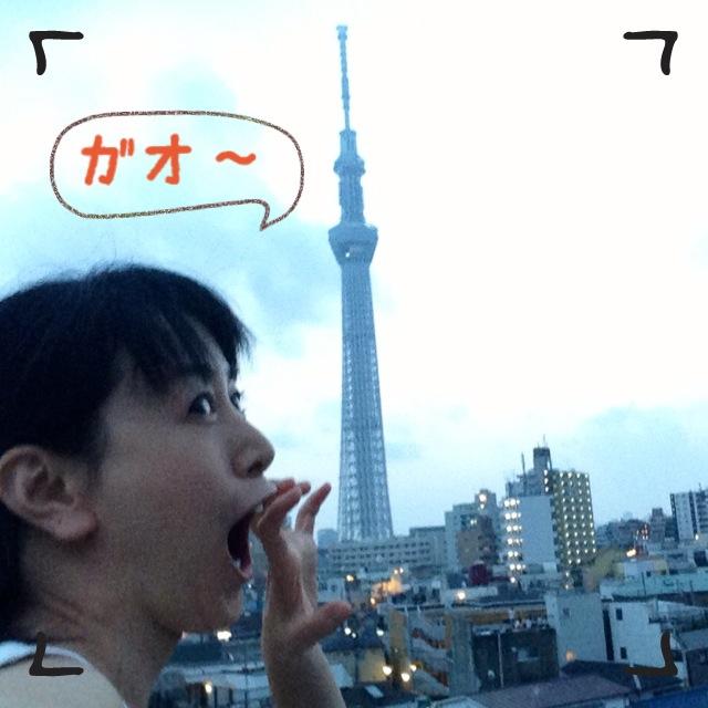 隅田川花火 (*^_^*)
